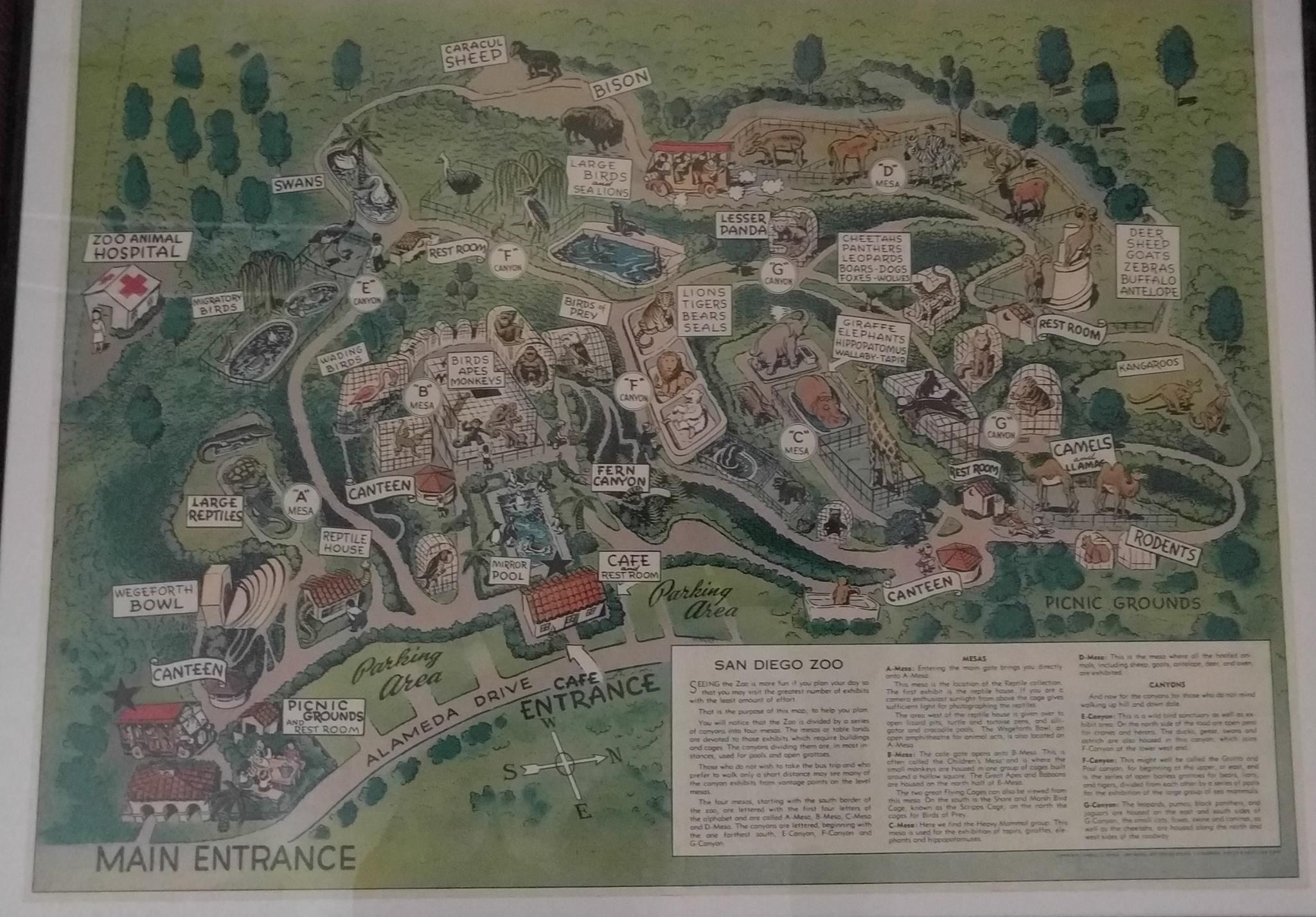 vintage san diego zoo maps yew
