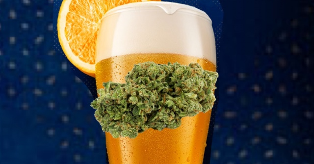 blue moon marijuana beer