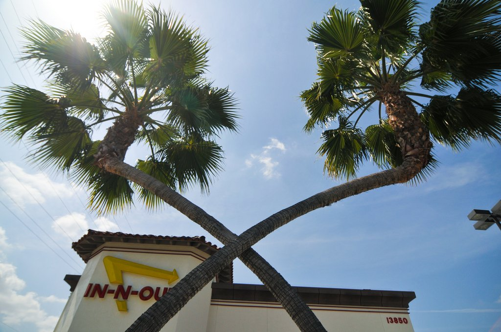 In-N-Out crossed palm trees
